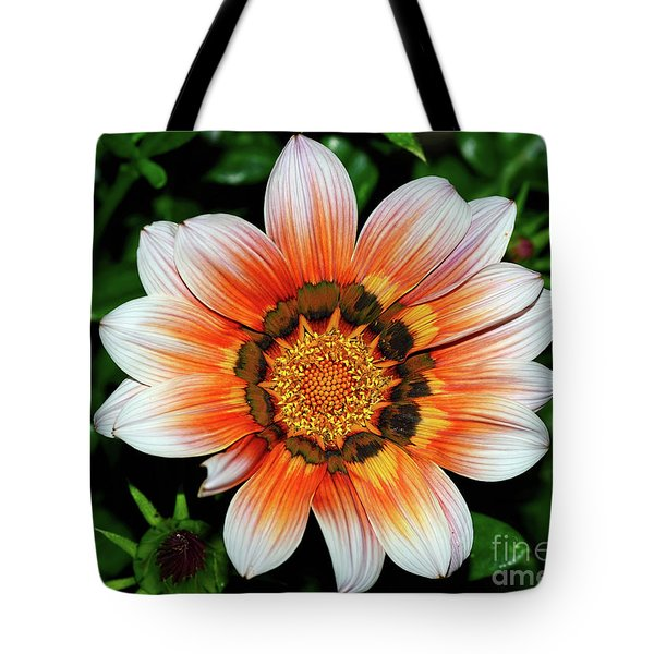 Tote Bag featuring the photograph Pretty Gazania By Kaye Menner by Kaye Menner