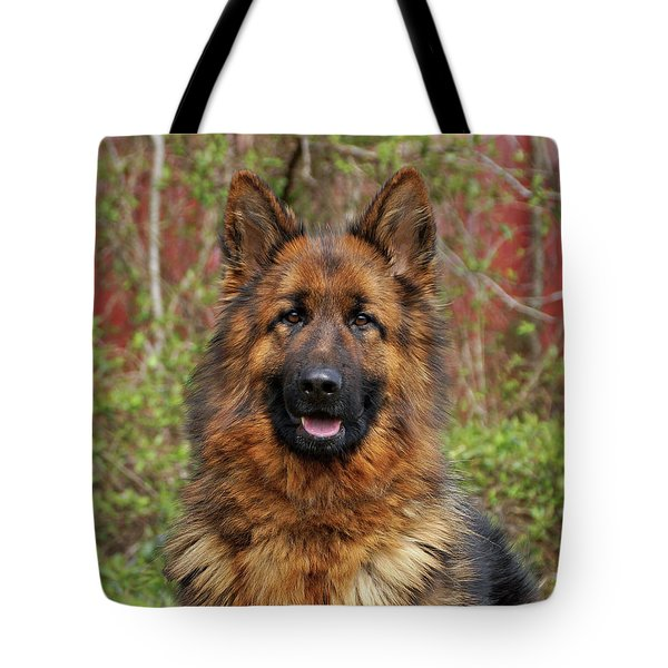 Tote Bag featuring the photograph Pretty Girl Onja by Sandy Keeton