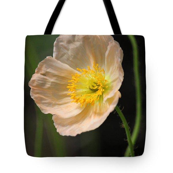 Pretty In Peach Tote Bag by Suzanne Gaff