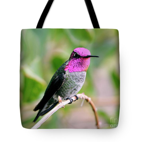 Pretty In Pink Anna's Hummingbird Tote Bag