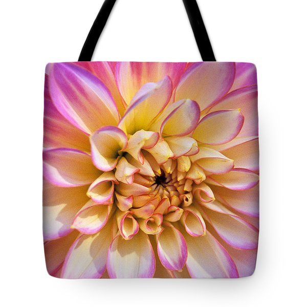 Pretty In Pink Dahlia Tote Bag by Kathy Yates