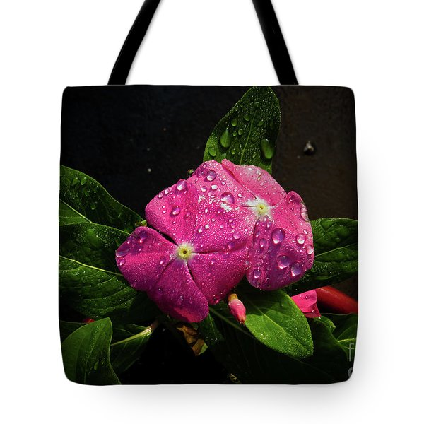 Pretty In Pink Tote Bag by Douglas Stucky