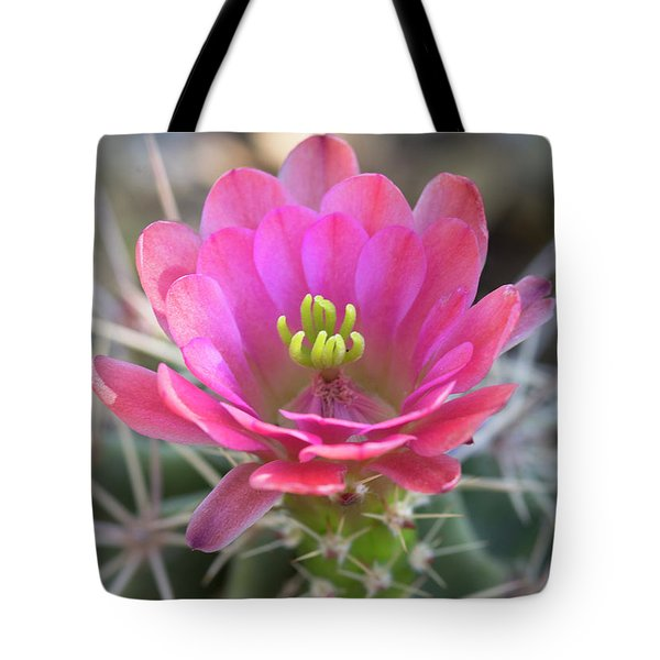 Tote Bag featuring the photograph Pretty In Pink Hedgehog  by Saija Lehtonen