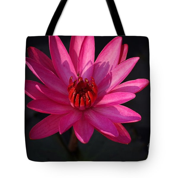 Pretty In Pink Tote Bag by John S