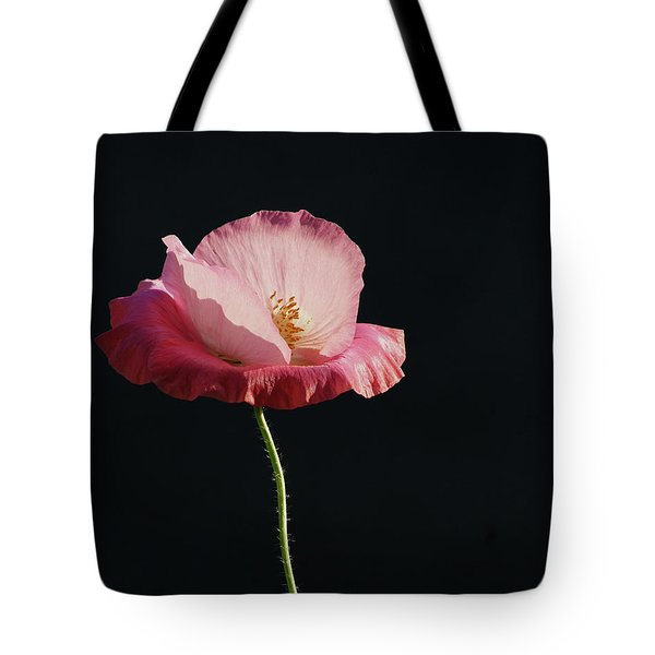 Pretty In Pink Profile  Tote Bag