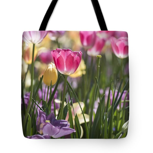 Pretty In Pink Tulips Tote Bag