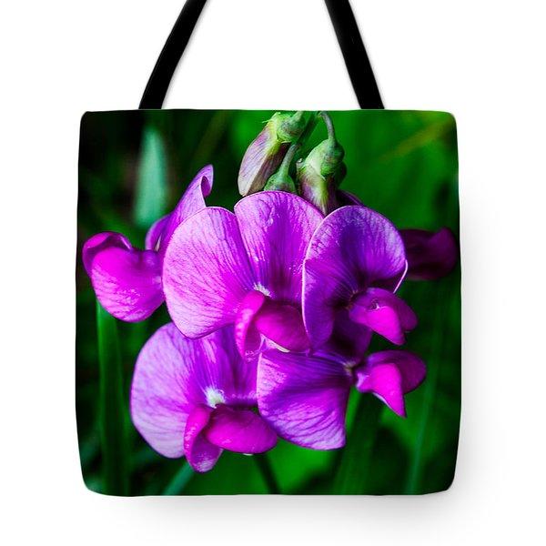 Pretty In Pink Wild Orchids Tote Bag by John Haldane