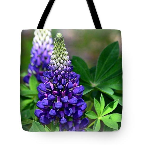 Pretty In Purple Tote Bag by Clarice  Lakota