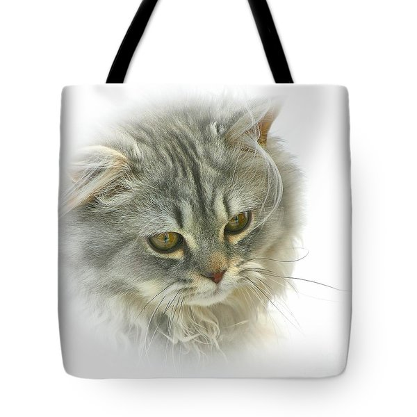 Tote Bag featuring the photograph Pretty Kitty by Debbie Stahre