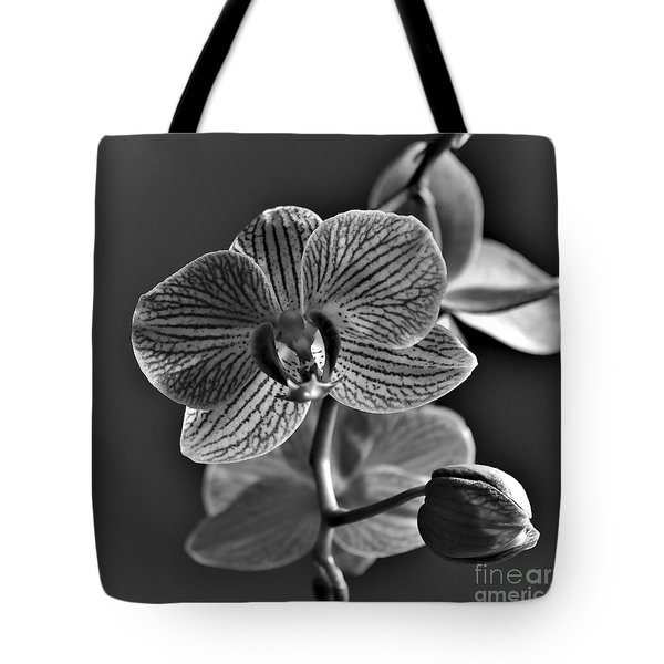 Tote Bag featuring the photograph Pretty Orchid Bw by Jeremy Hayden