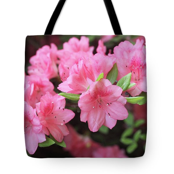 Pretty Pink Azalea Blossoms Tote Bag