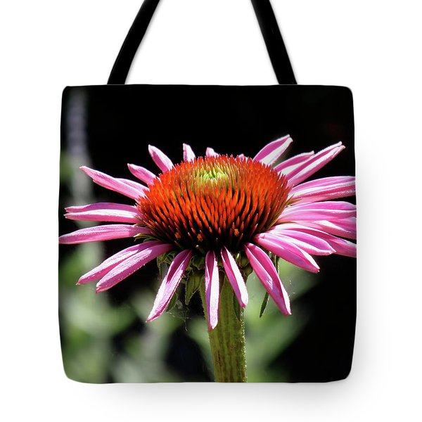 Pretty Pink Coneflower Tote Bag by Rona Black