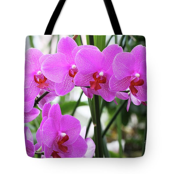 Pretty Pink Phalaenopsis Orchids #2 Tote Bag