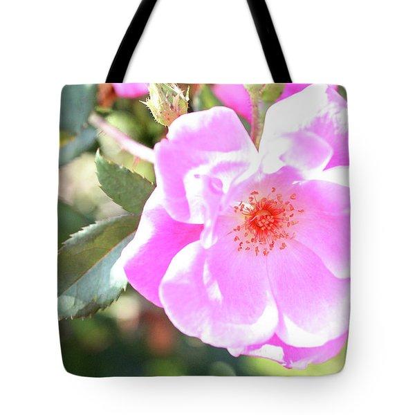 Pretty Pink Rose Tote Bag