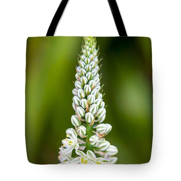 Pretty Pods Tote Bag