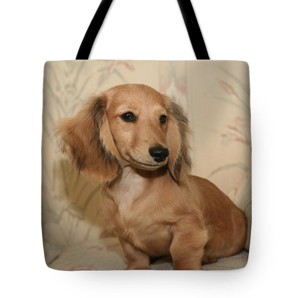 Pretty Pup Tote Bag
