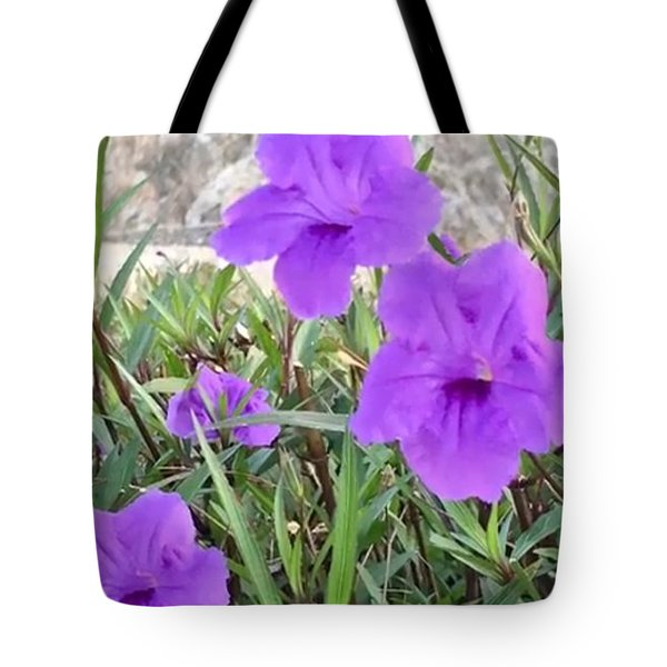 Tote Bag featuring the photograph Pretty Purple by Cindy Charles Ouellette