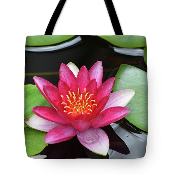 Pretty Red Water Lily Flowering In A Water Garden Tote Bag