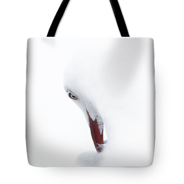 Tote Bag featuring the photograph Pretty Seagull 01 by Kevin Chippindall