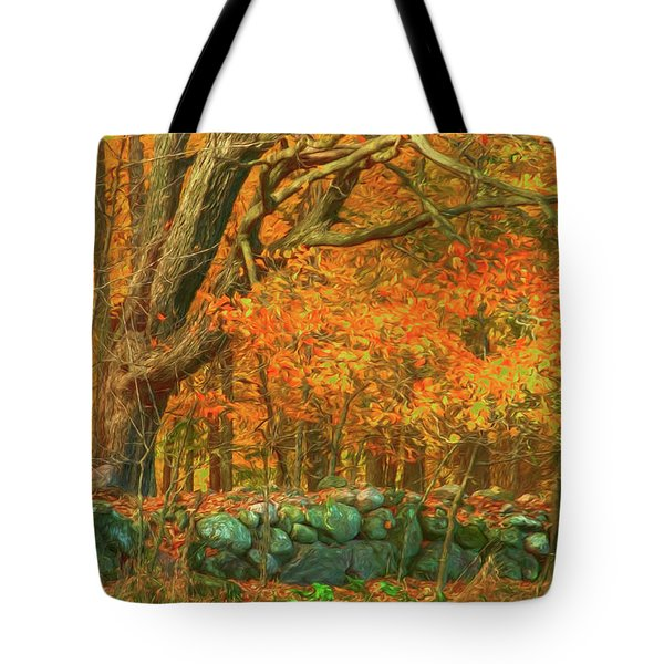 Preuss Road Stone Wall Tote Bag by Trey Foerster