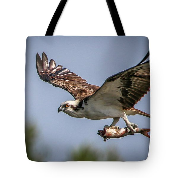 Tote Bag featuring the photograph Prey In Talons by Tom Claud