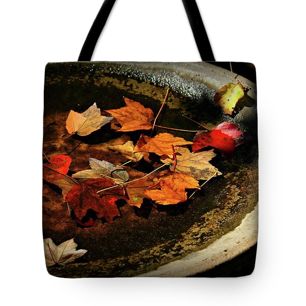 Tote Bag featuring the photograph Priceless Leaves Fall by Reid Callaway
