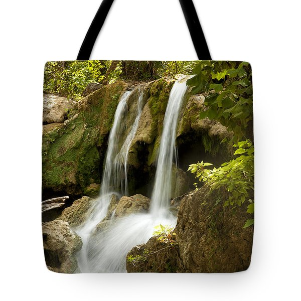 Prices' Falls Tote Bag