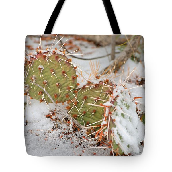 Prickley Pear Cactus Tote Bag by Donna Greene
