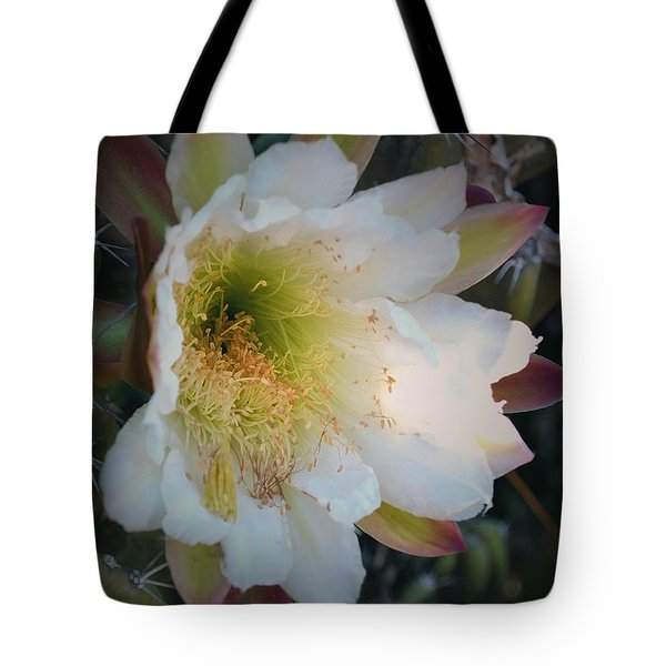 Tote Bag featuring the photograph Prickley Pear Cactus by Kate Word