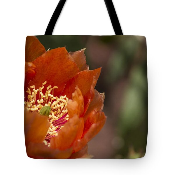 Prickly Pear Bloom Tote Bag