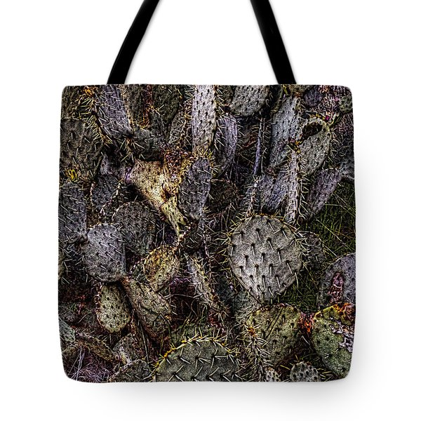 Prickly Pear Cactus At Tonto National Monument Tote Bag