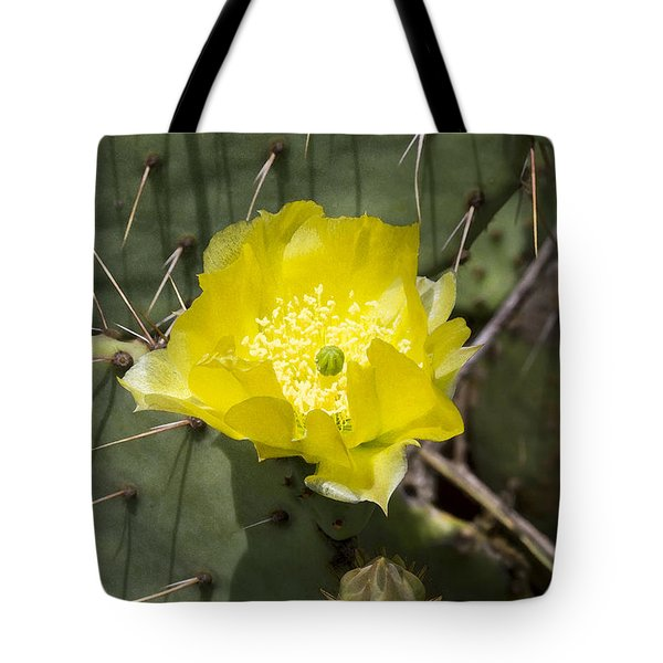 Prickly Pear Cactus Blossom - Opuntia Littoralis Tote Bag