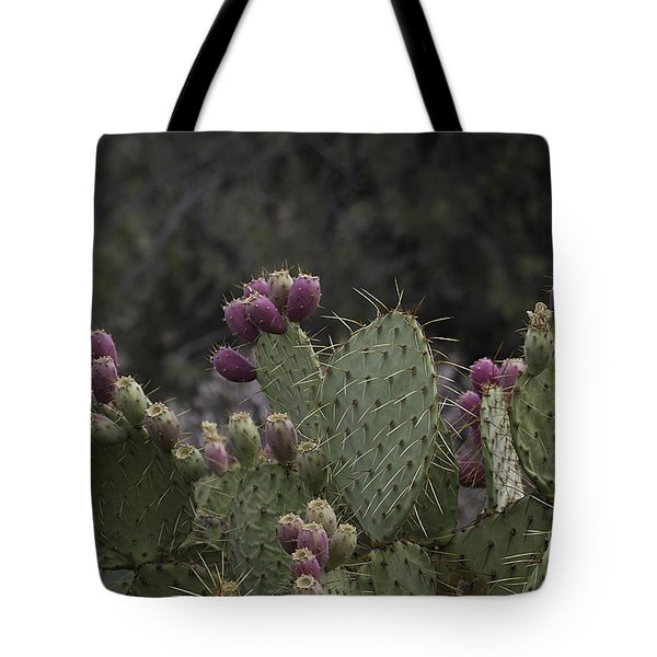 Tote Bag featuring the photograph Prickly Pear Cactus With Fruit by Anne Rodkin