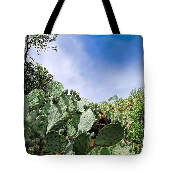 Tote Bag featuring the photograph Prickly Pear Hillside by Gina Savage