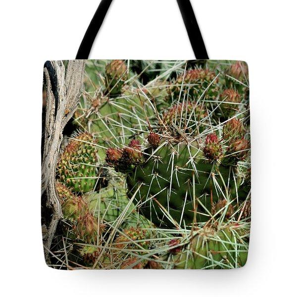 Prickly Pear Revival Tote Bag