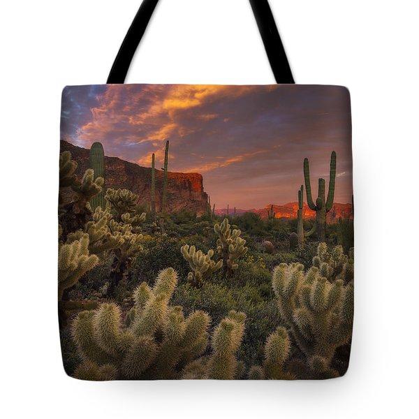 Prickly Pink Peralta Tote Bag by Peter Coskun