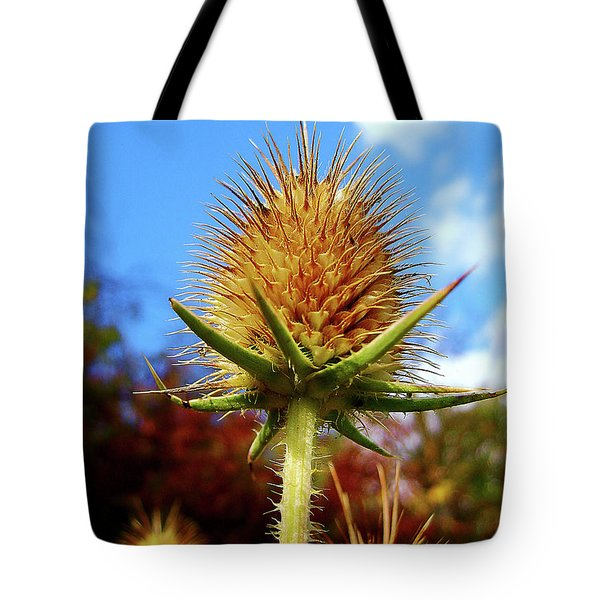 Tote Bag featuring the photograph Prickly Thistle by Nina Ficur Feenan