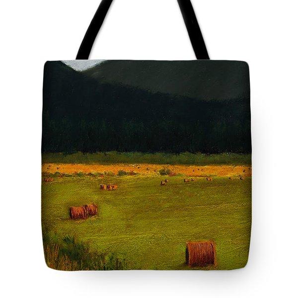 Priest Lake Hay Bales Tote Bag by David Patterson