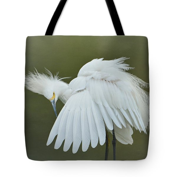 Prim And Preen 3 Tote Bag