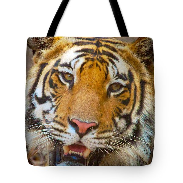 Prime Tiger Tote Bag