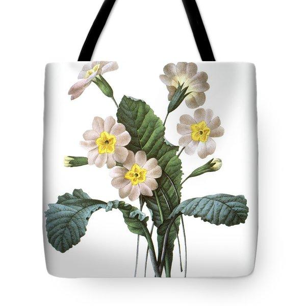 Primrose (primula Aucalis) Tote Bag by Granger