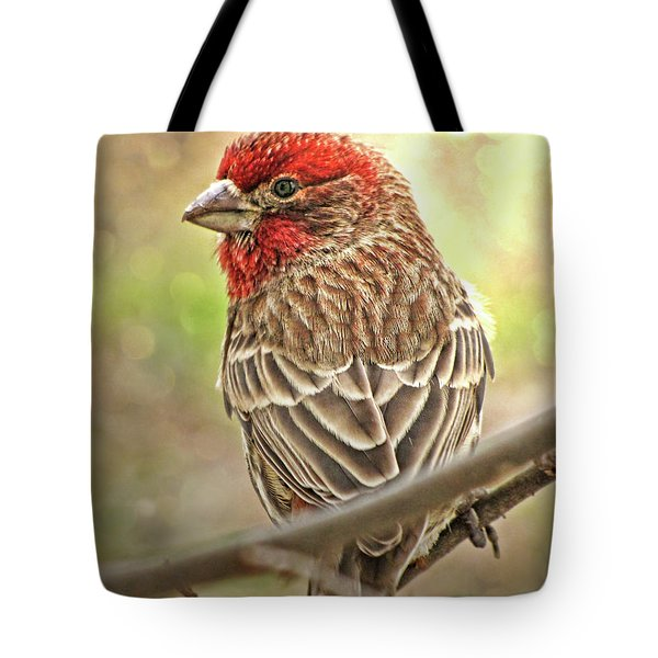 Tote Bag featuring the photograph Prince  by Debbie Portwood