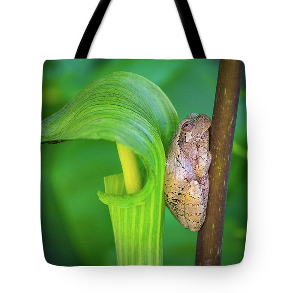Prince Of The Pulpit Tote Bag