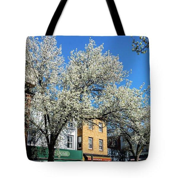 Princeton Spring 2018 Tote Bag