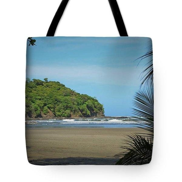 Pristine Shore Tote Bag by Pamela Blizzard