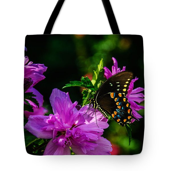 Private Dancer Tote Bag by John Harding