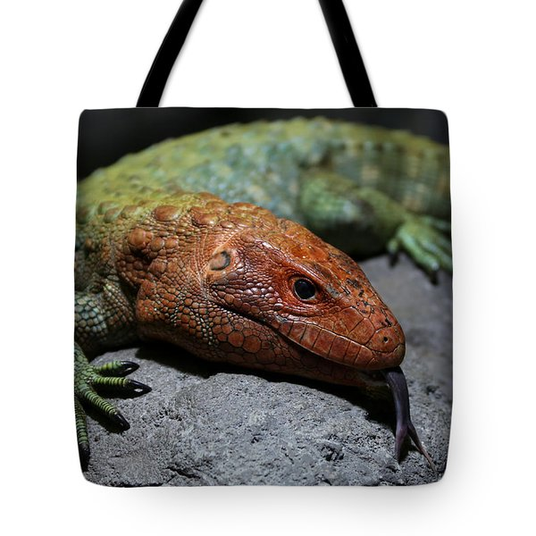 Professional Rock Taster Tote Bag