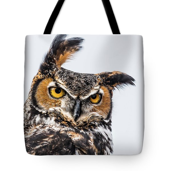 Professor Wise Tote Bag