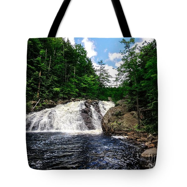 Profile Falls Bristol N H Tote Bag by Mim White