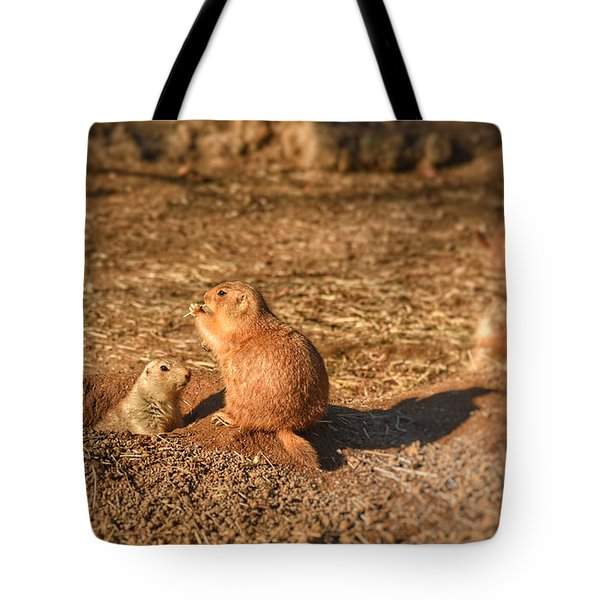 Profile In Light I Tote Bag